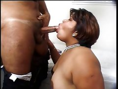 Selenne latina bbw & will ravage