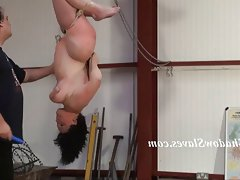 Suspended slaves breast whipping and..